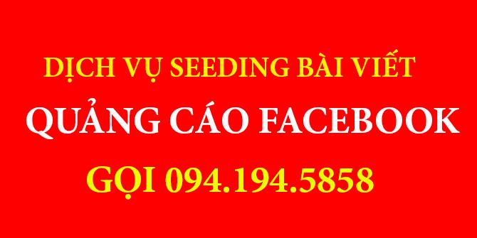 dich-vu-seeding-bai-viet-facebook